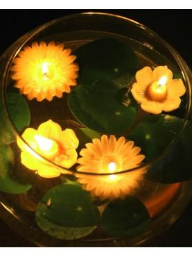 Plaukiojanti gėlė