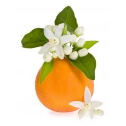 Apelsinų žiedų kvapnusis...